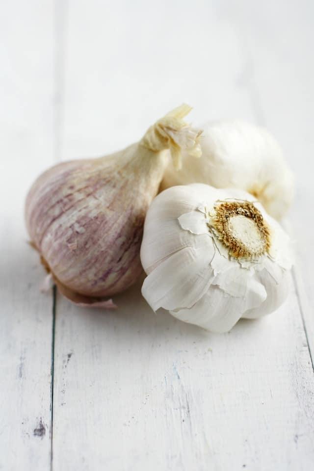 heads of garlic on white background