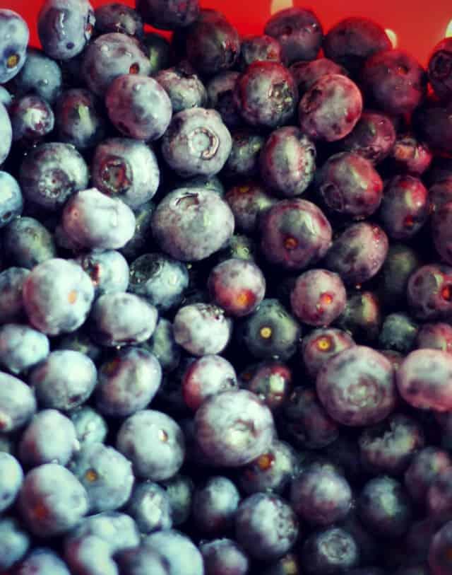 easy blueberry lemon bar recipe