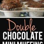 dairy free double chocolate mini muffin recipe
