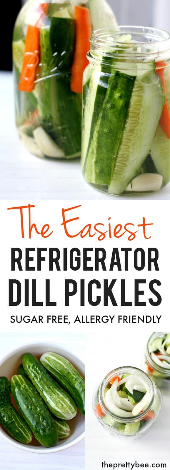 These easy refrigerator dill pickles are crisp, salty, and garlicky! These are a summer favorite! #glutenfree #dairyfree #vegan #grainfree #pickles