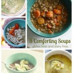 Five Gluten Free and Dairy Free Soup Recipes.