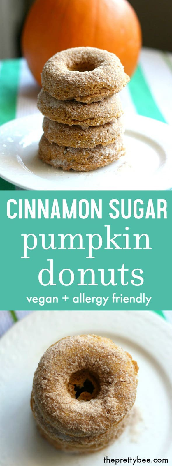 Soft and delicious cinnamon sugar pumpkin donuts are the perfect treat to enjoy with hot cider!