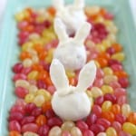 Make these cute little OREO truffle bunnies for Easter! Gluten free and vegan ingredient options, too!