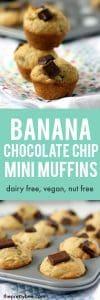 vegan chocolate chip banana muffins