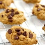 25 of the Best Vegan Chocolate Chip Cookies.