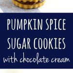 These pumpkin spice sugar cookies are filled with a rich chocolate cream - truly a delicious combination!