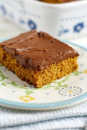 A delicious pumpkin sheet cake topped with rich chocolate frosting. Perfect for Thanksgiving!