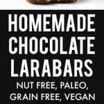 Nut free chocolate larabar recipe