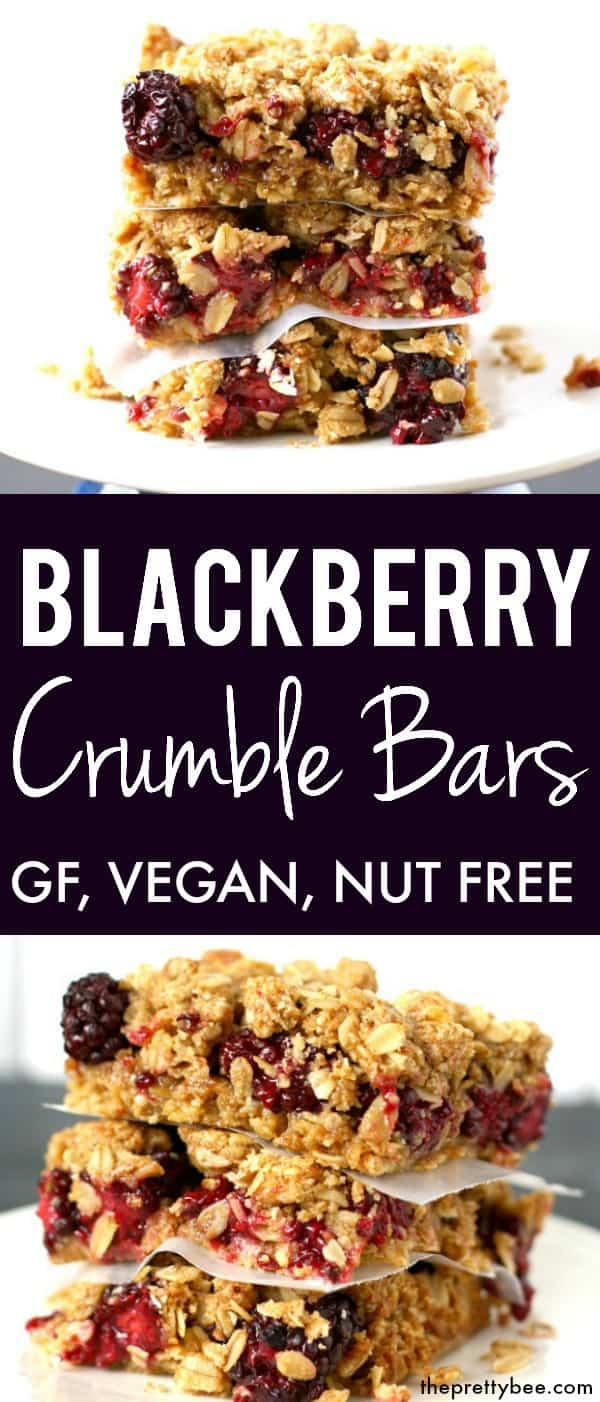 Blackberry Crumble Bars (Gluten Free, Vegan)  - The Pretty Bee