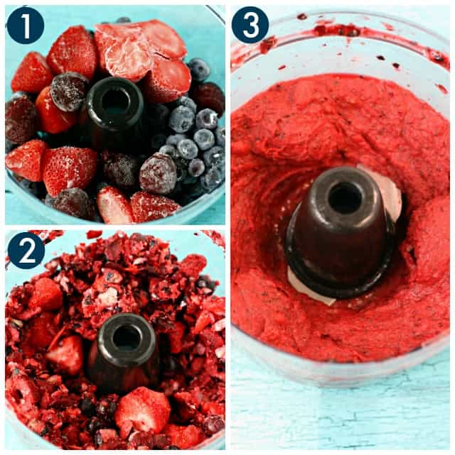 photos of each step making sorbet in the food processor