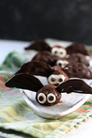 brownie bite bats